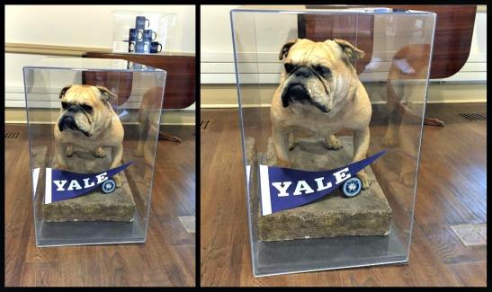 Yale tour 1