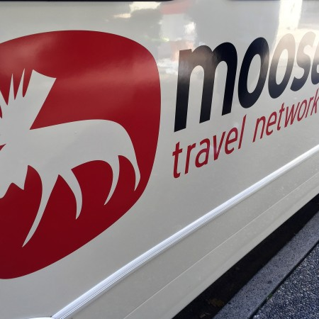 whistler-moose-travel
