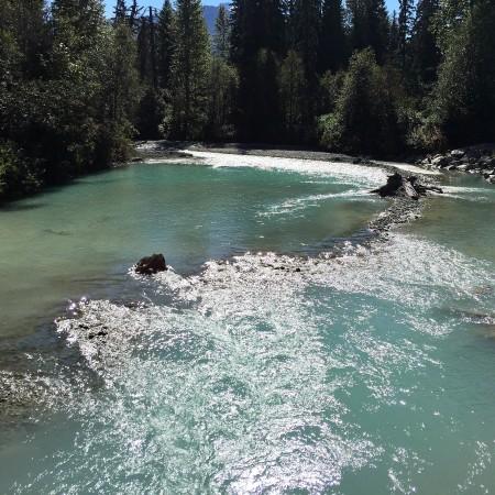 whistler-trail-3